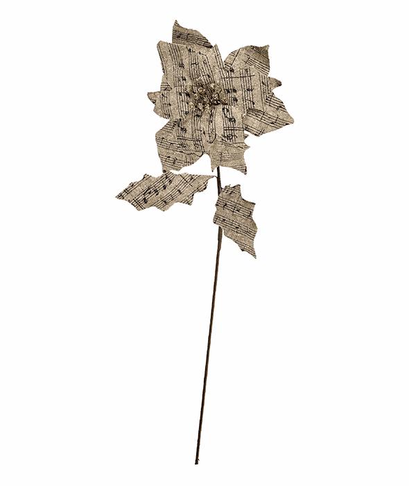 Stella Natale juta pentagramma 55 cm