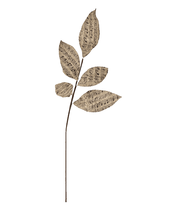 Ramo foglie juta pentagramma 60 cm